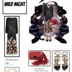 Wild Night