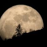«Las lunas» de las mujeres